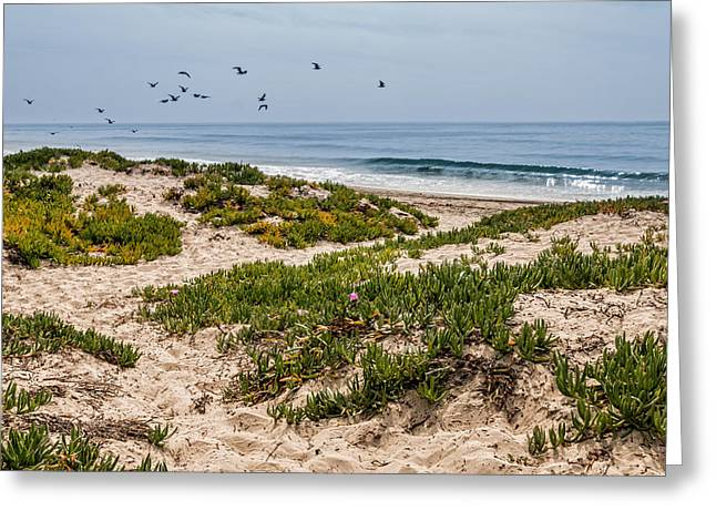 California Ocean Photography Greeting Cards - Carpinteria State Beach Greeting Card by Patti Deters
