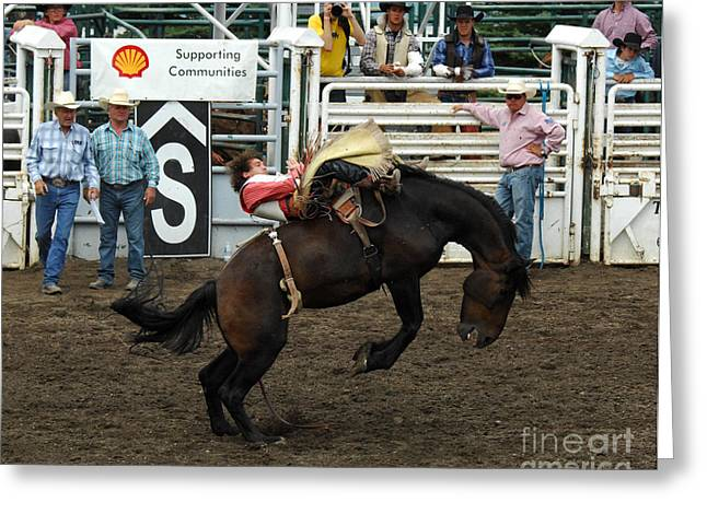 At Work Greeting Cards - No Worries Cowboy Greeting Card by Bob Christopher