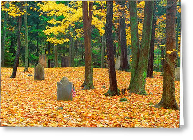Noah Greeting Cards - Noah Phelps Grave In Revolutionary War Greeting Card by Panoramic Images