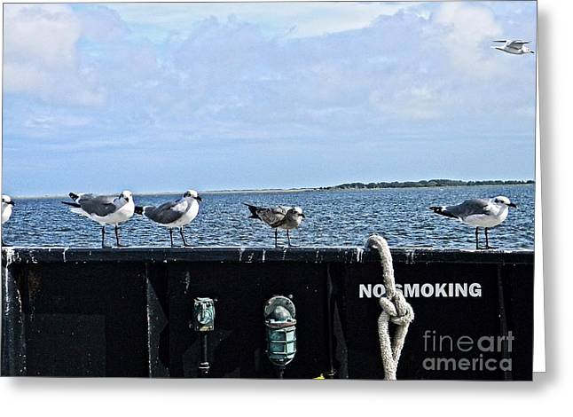 Non Smoking Section Greeting Card by JW Hanley
