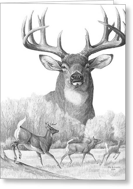Mammals Drawings Greeting Cards - North American Nobility Whitetail Deer Greeting Card by Laurie McGinley