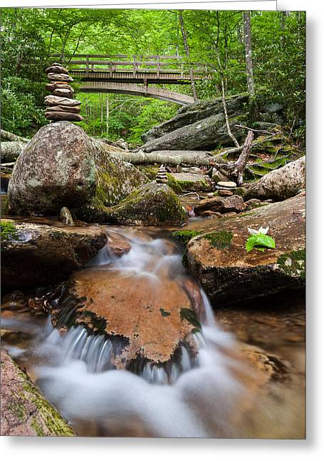 North Fork Greeting Cards - North Carolina Blue Ridge Mountain Lush Summer Stream Greeting Card by Mark VanDyke