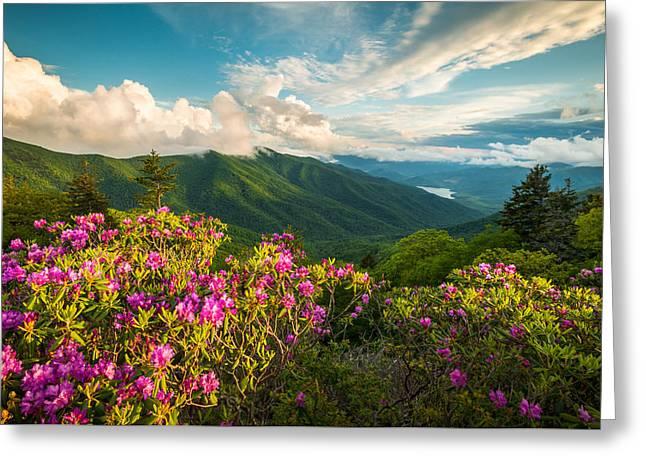 Asheville Nc Greeting Cards - North Carolina Blue Ridge Parkway Spring Mountains Scenic Landscape Greeting Card by Dave Allen