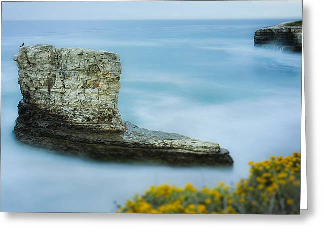 Hwy 1 Greeting Cards - North Coast Seascape Greeting Card by Steve Spiliotopoulos