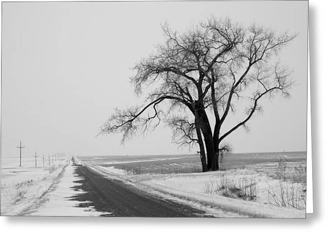 Cold Photographs Greeting Cards - North Dakota Scenic Highway Greeting Card by Bob Mintie