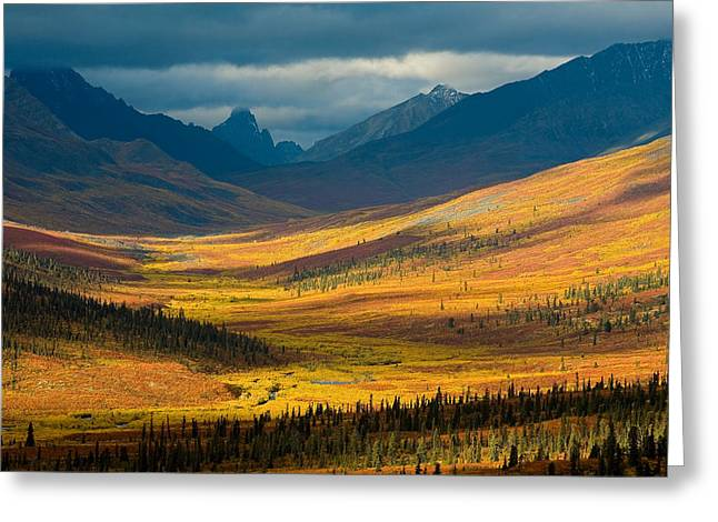 North Klondike River Valley, Tombstone Greeting Card by John Sylvester