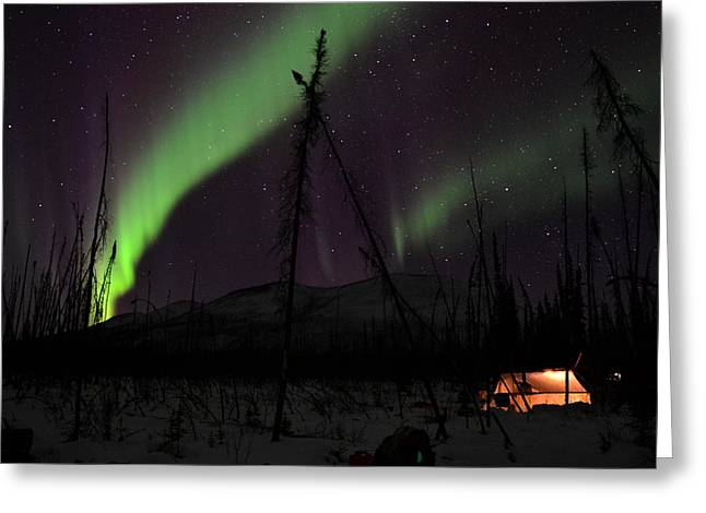 Winter Night Greeting Cards - North Light Greeting Card by Jonathan Dowdell