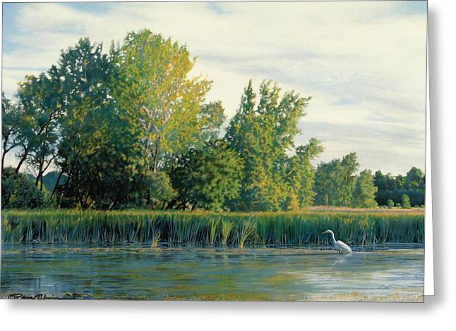 Great Egret Greeting Cards - North of the Grade-Great Egret Greeting Card by Bruce Morrison