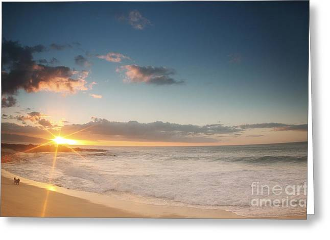 Amazing Sunset Greeting Cards - North Shore Oahu Sunset Greeting Card by Vince Cavataio - Printscapes
