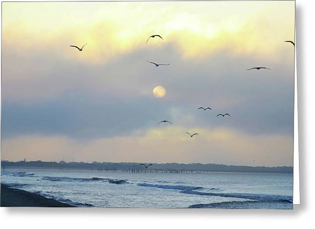 Seagulls Digital Greeting Cards - North Wildwood Beach Greeting Card by Bill Cannon