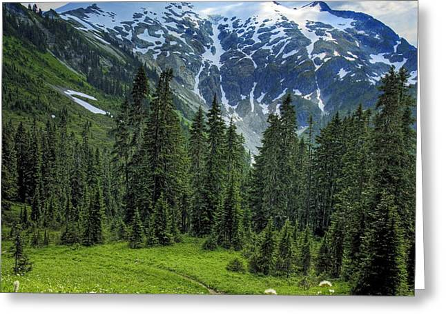 Northern Cascades in Washington State    Mount Ruth Greeting Card by Brendan Reals