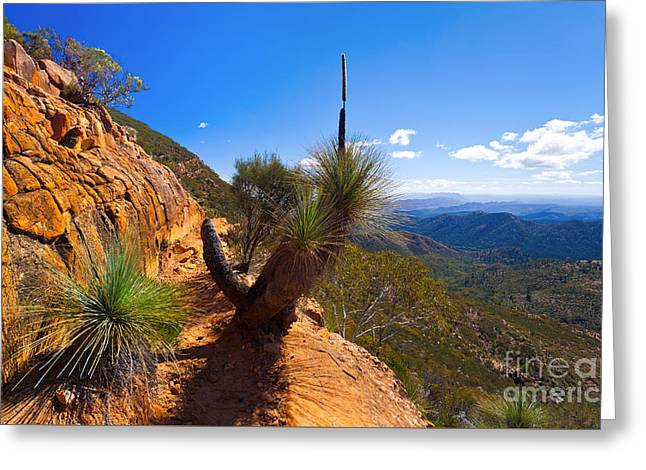 Pounds Greeting Cards - Northern Flinders Ranges and the ABC Range Greeting Card by Bill  Robinson