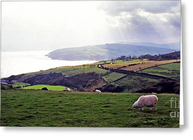 Northern Ireland Panoramic  Greeting Card by Thomas R Fletcher