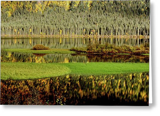 Fall River Scenes Digital Greeting Cards - Northern Lake Greeting Card by Mark Duffy