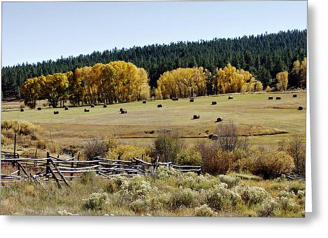 Chama Greeting Cards - Northern New Mexico Autumn Greeting Card by Troy Montemayor