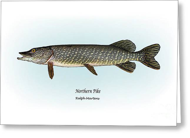 Fish Print Greeting Cards - Northern Pike Greeting Card by Ralph Martens