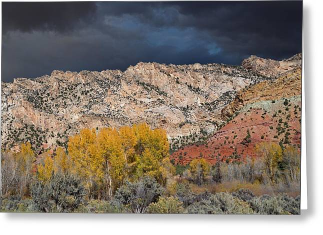 Geology Photographs Greeting Cards - Northern Uintas Autumn Greeting Card by Kathleen Bishop