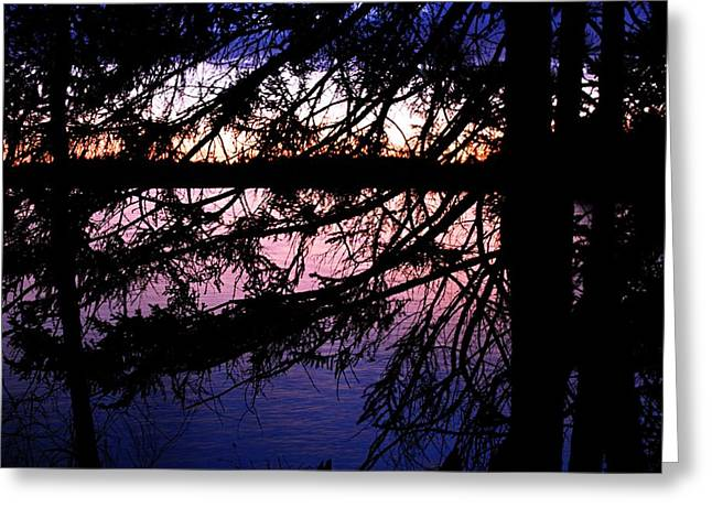 Boundary Waters Greeting Cards - Northwoods Twilight Greeting Card by Larry Ricker