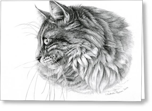 Cat Drawings Greeting Cards - Norwegian Forest Cat Greeting Card by Svetlana Ledneva-Schukina