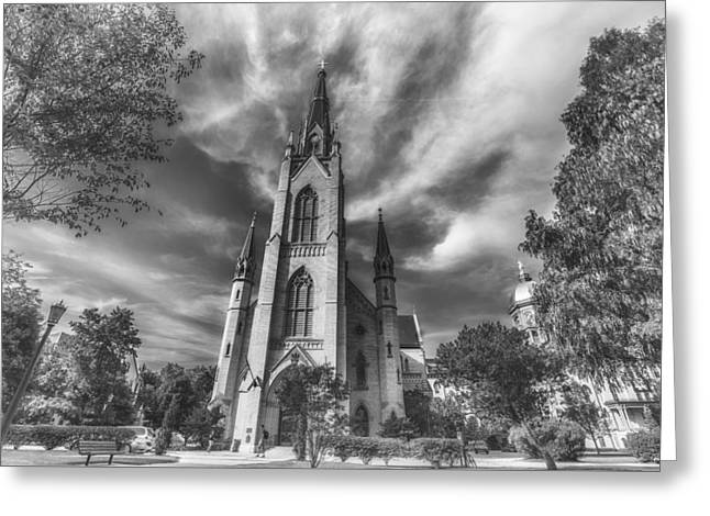 Notre Dame University 4 Black White Greeting Card by David Haskett