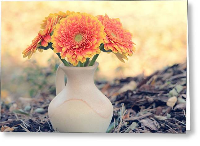 November In The Garden Greeting Card by SK Pfphotography