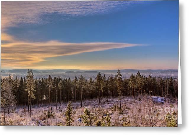 November Morning Greeting Card by Veikko Suikkanen