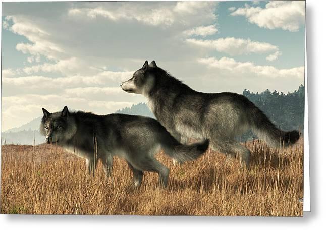 November Wolves Greeting Card by Daniel Eskridge
