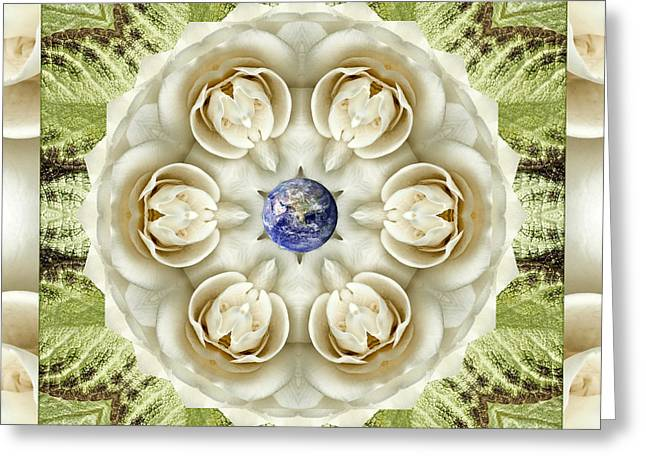 Novia Blanca Greeting Card by Bell And Todd