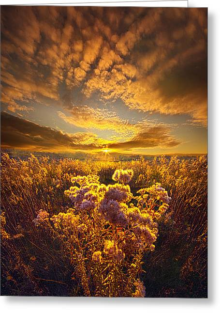 Now Is My Story Greeting Card by Phil Koch