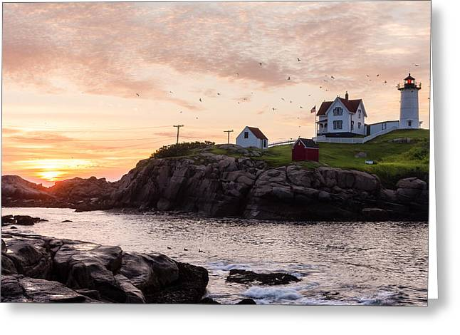 Cape Neddick Lighthouse Greeting Cards - Nubble at Sunrise Greeting Card by Steven Campbell