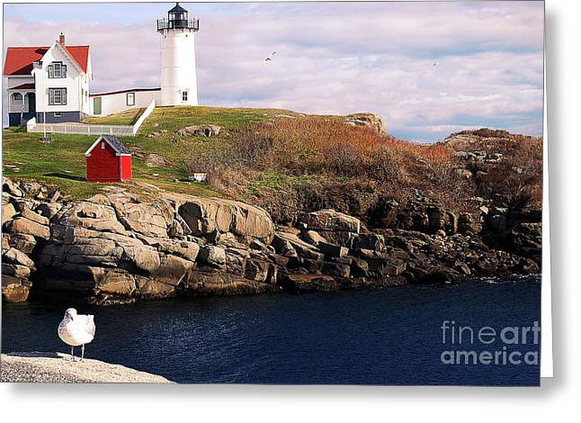 Nubble Light - Maine Greeting Card by Mim White
