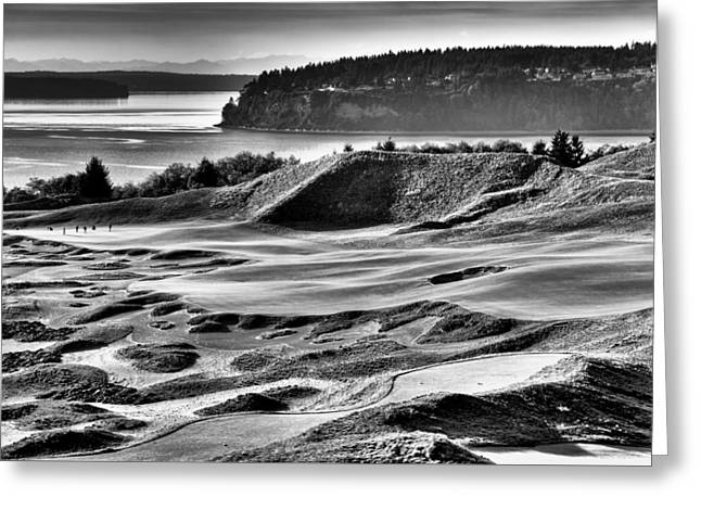 Us Open Greeting Cards - Number 14 at Chambers Bay Greeting Card by David Patterson