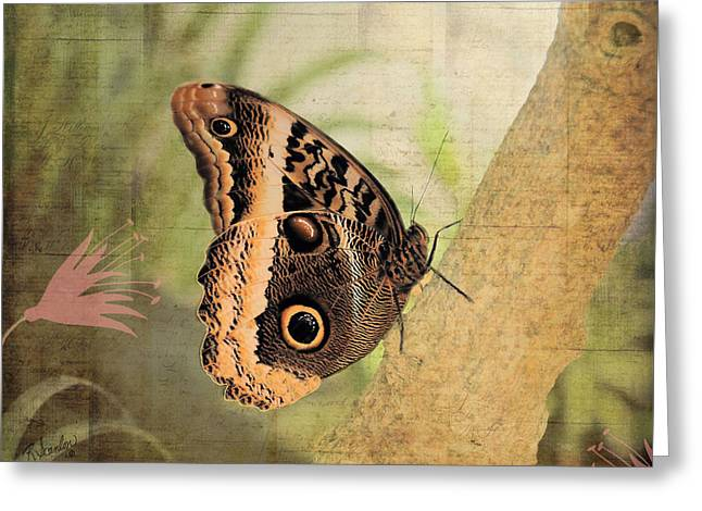Blue Morpho Butterfly Side View Greeting Card by Rosalie Scanlon