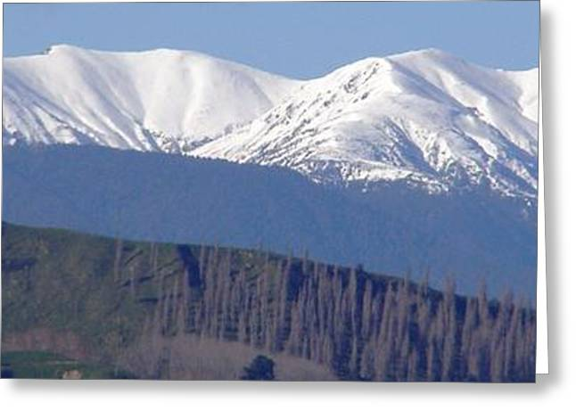Aotearoa Greeting Cards - NZ Mountains Greeting Card by Janice OBrien