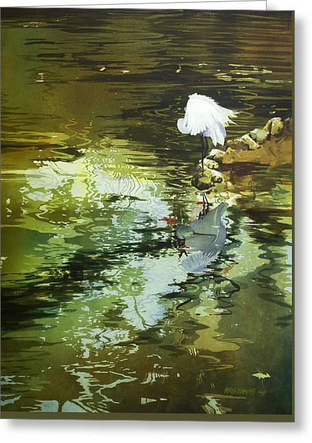 Pond In Park Greeting Cards - The Morning Mirror Greeting Card by Kris Parins