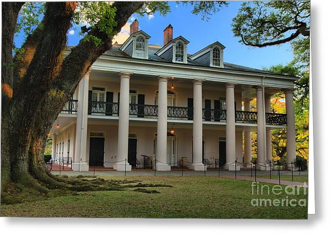 Slavery Greeting Cards - Oak Alley Mansion Greeting Card by Adam Jewell