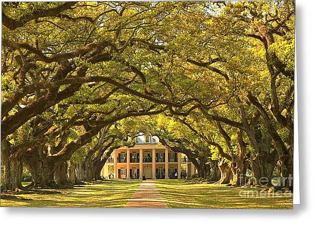 Slavery Greeting Cards - Oak Alley Plantation House Greeting Card by Adam Jewell