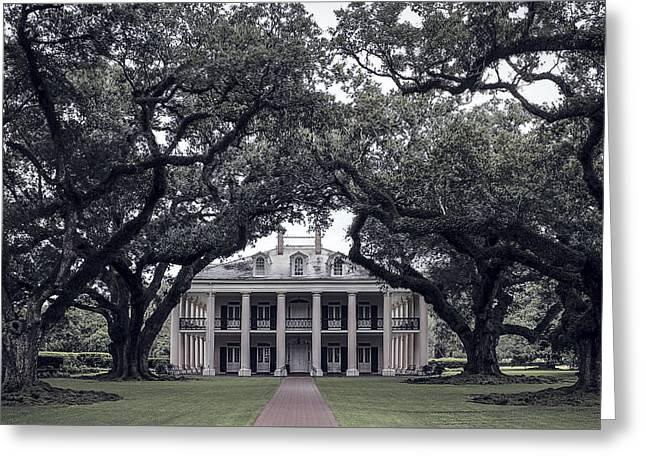 Oak Alley Plantation - Louisiana Greeting Card by Daniel Hagerman