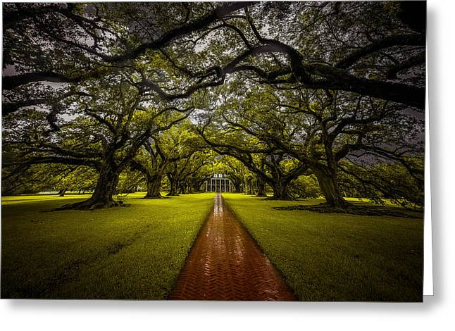 Michelle Greeting Cards - Oak Alley Plantation Greeting Card by Michelle Saraswati