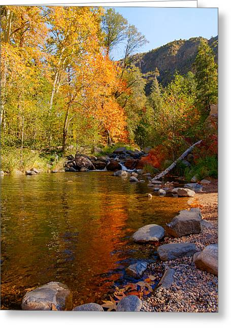Oak Creek Greeting Cards - Oak Creek Canyon Fall Colors Greeting Card by Austin Troya