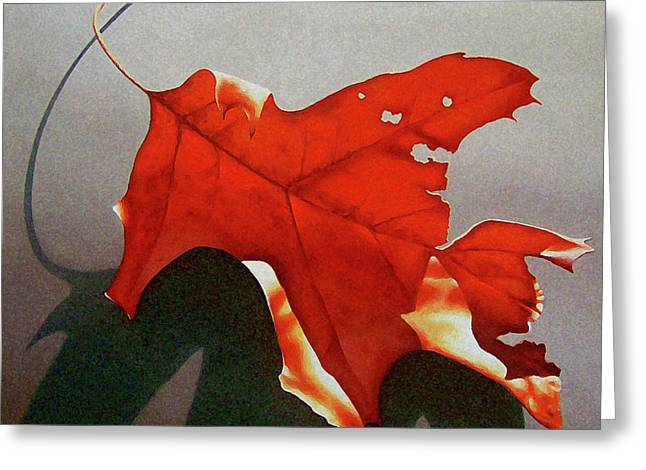 Greeting Cards - Oak Leaf 1 Greeting Card by Timothy Jones