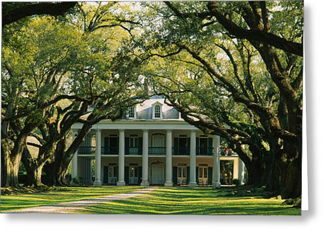 Oak Alley Greeting Cards - Oak Trees In Front Of A Mansion, Oak Greeting Card by Panoramic Images