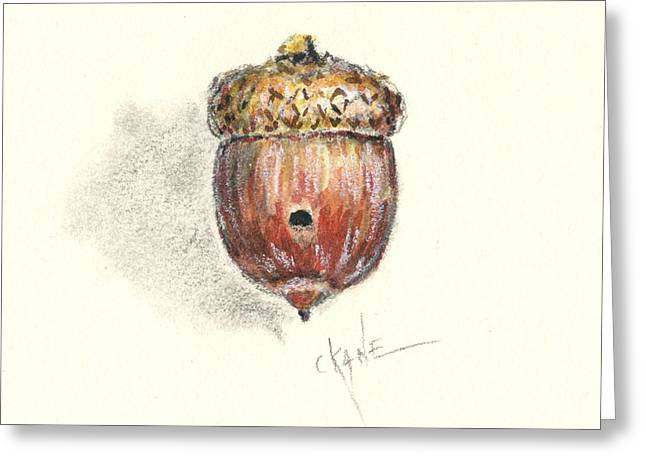 Acorns Greeting Cards - Occupied Greeting Card by Christine Camp
