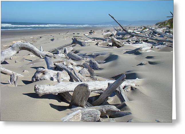 Driftwood Greeting Cards - Ocean Coastal art prints Driftwood Beach Greeting Card by Baslee Troutman
