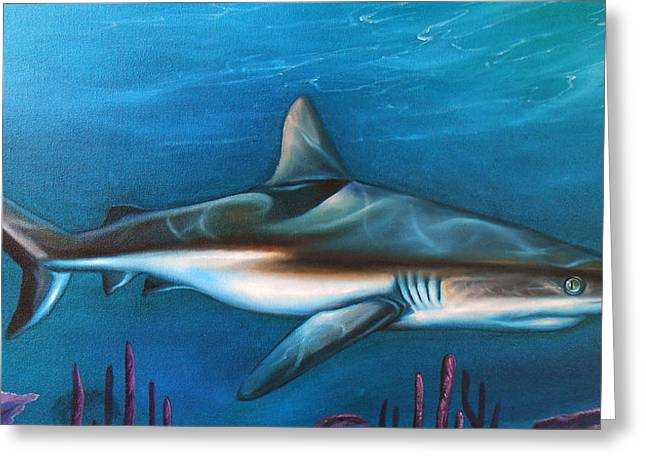 White Shark Paintings Greeting Cards - Ocean Gaurdian Greeting Card by James Deaton Store