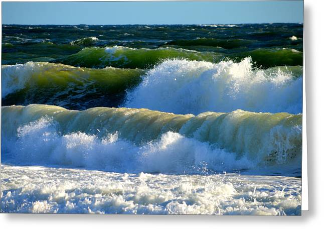 Aquatic Greeting Cards - Ocean Majesty Greeting Card by Dianne Cowen