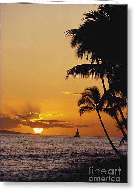Ocean Sunset Greeting Card by Erik Aeder - Printscapes