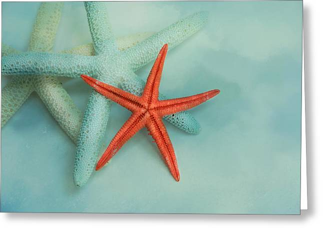 Beach Greeting Cards - Ocean Treasures Greeting Card by Jai Johnson