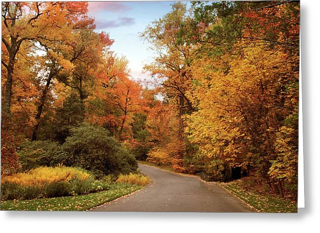 Rural Road Greeting Cards - October Afternoon Greeting Card by Jessica Jenney