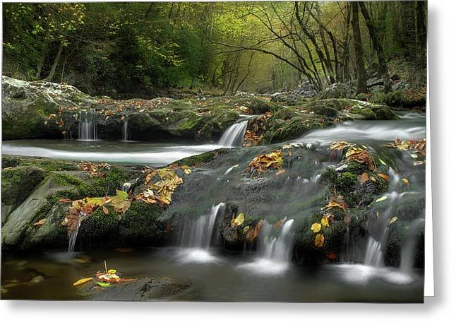 October In The Smokies Greeting Card by Michael Eingle